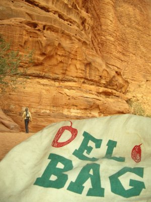 Bag In Wadi Rum Jordan.JPG